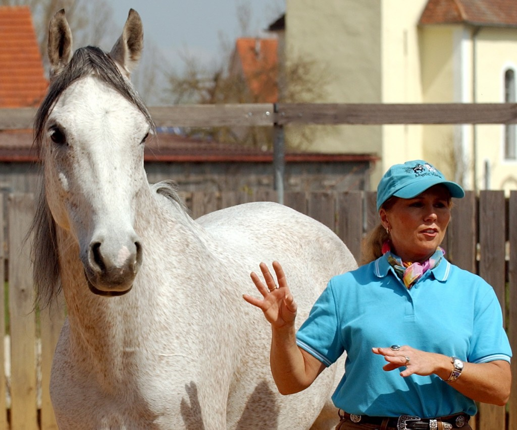 Mary Ann Simonds & Equine Friend Teaching together