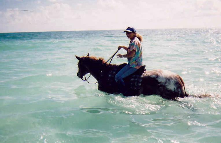 ocean-horse
