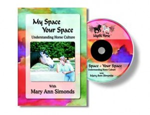 My Space Your Space DVD - Mary Ann Simonds