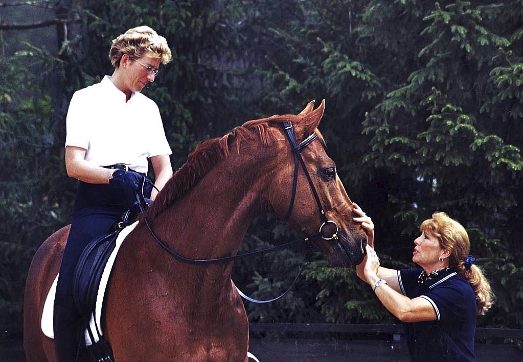 Equine Behavior & Equestrian Coaching
