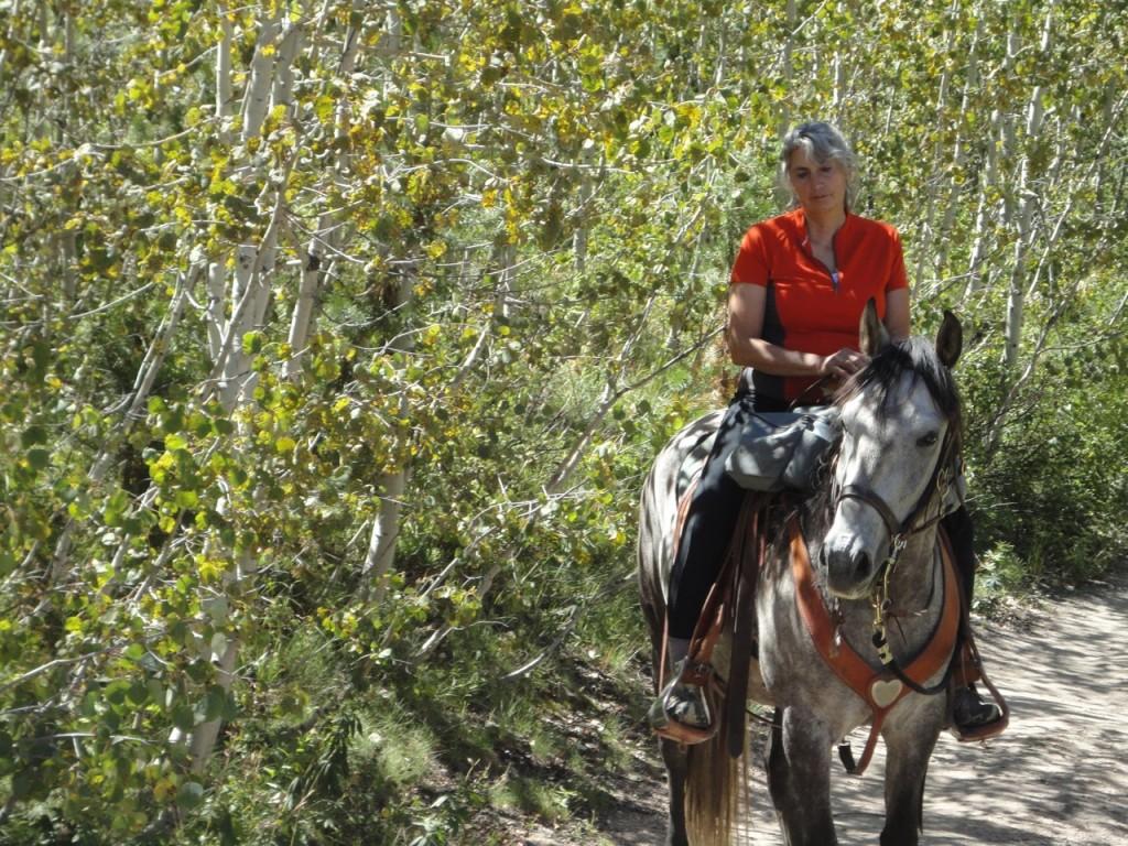 Horsewomen, Women's Quest Horse camp