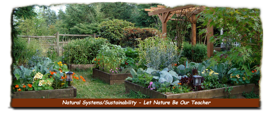 Natural Systems & Sustainability